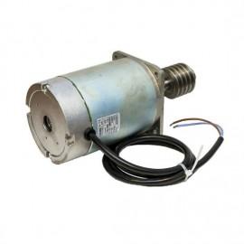 Электродвигатель GARD24 119RIG047